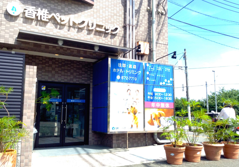 入口(駐車場側)