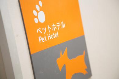 ペットホテル 犬