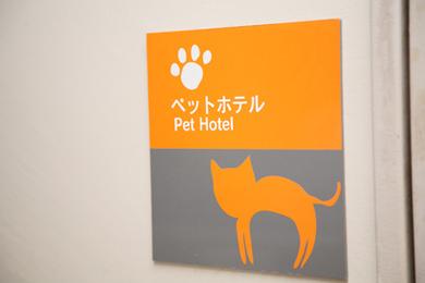 ペットホテル 猫